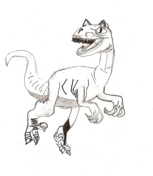 Drawing - Raptor by Fred Hanna