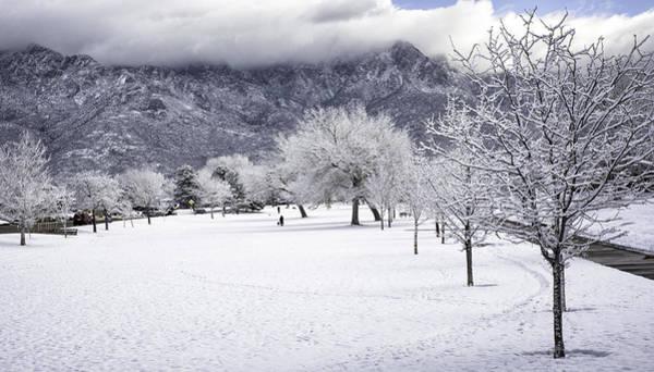 Photograph - Rare Snowfall by Susan Warren