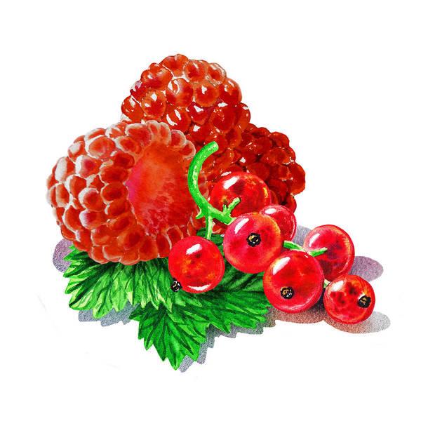 Wall Art - Painting - Raspberries And Redcurrant by Irina Sztukowski