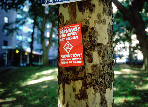 Notice Photograph - Rat Poison Notice by Robert Brook/science Photo Library