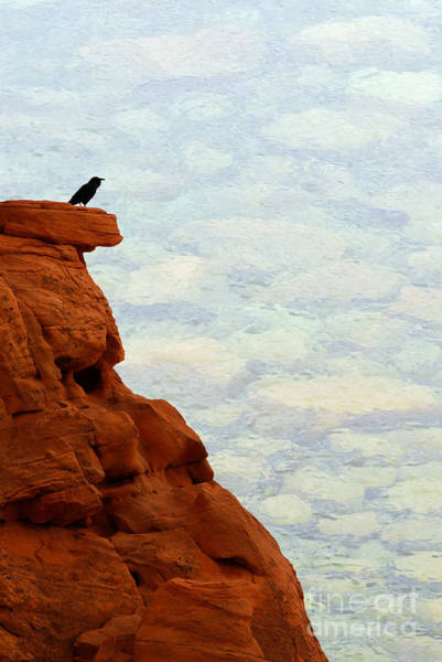 Photograph - Raven On A Red Cliff by Les Palenik