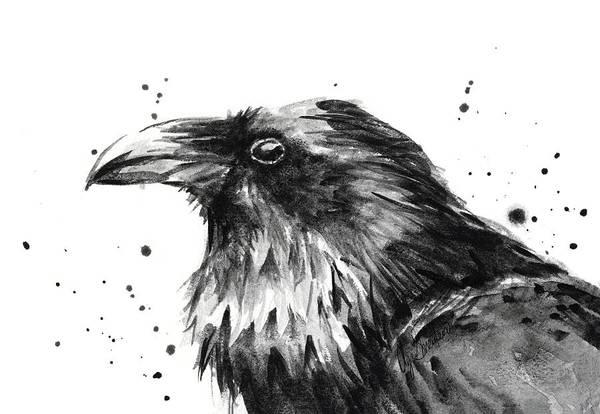 Crow Painting - Raven Watercolor Portrait by Olga Shvartsur