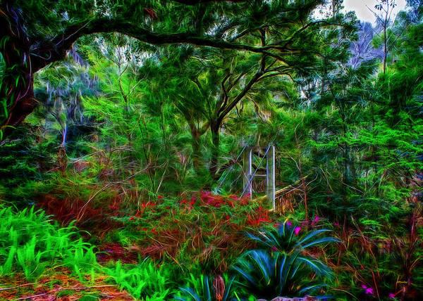 Photograph - Ravine Gardens by John M Bailey