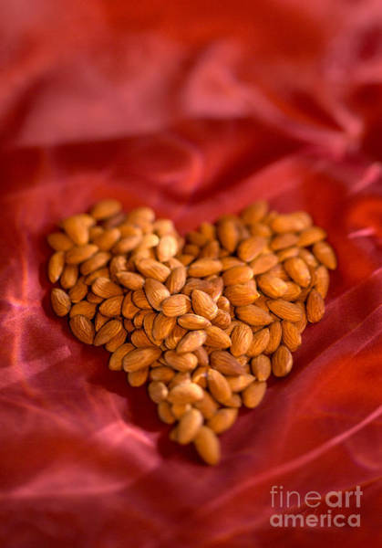 Wall Art - Photograph - Almond Heart by Iris Richardson