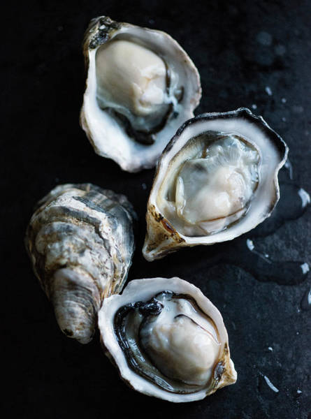 Food And Drink Photograph - Raw Oysters by Jack Andersen