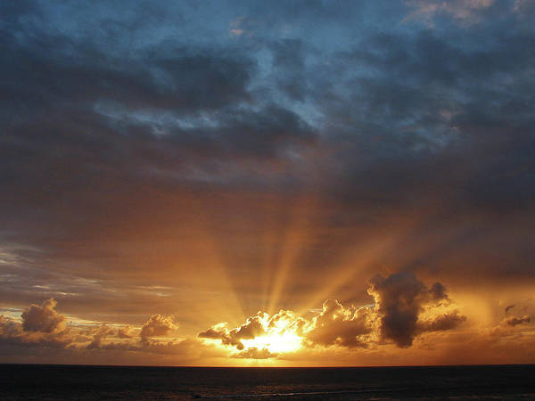 Photograph - Rays Of The Sun At Dawn by Susan Savad