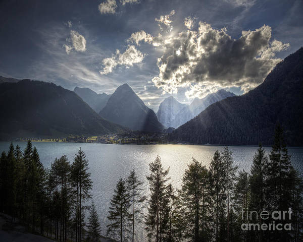 Photograph - Reach For The Light by Edmund Nagele