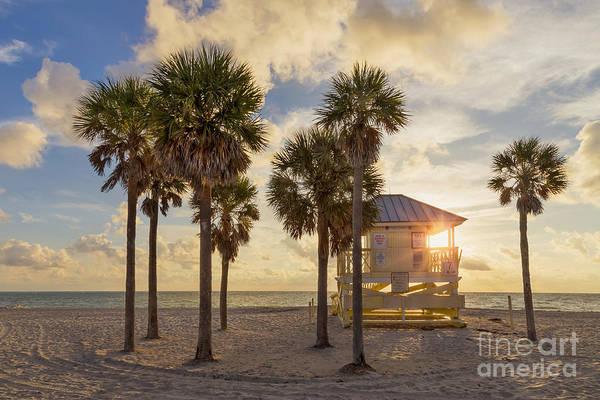 South Florida Wall Art - Photograph - Reach The Dawn by Evelina Kremsdorf