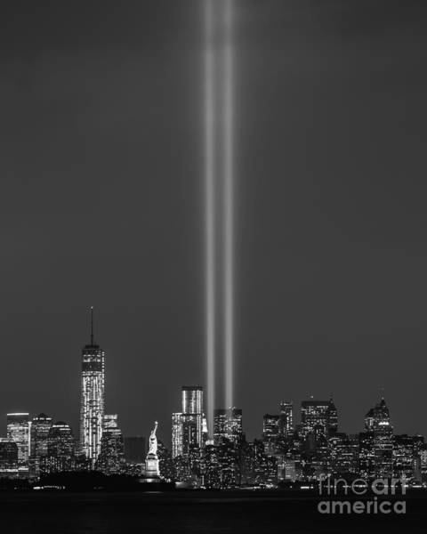 Nine Eleven Photograph - Reaching For The Light Bw by Michael Ver Sprill