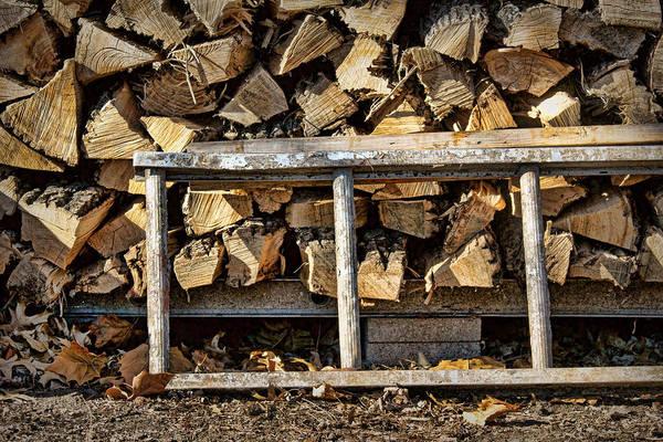 Rungs Wall Art - Photograph - Ready For Winter #2 by Nikolyn McDonald