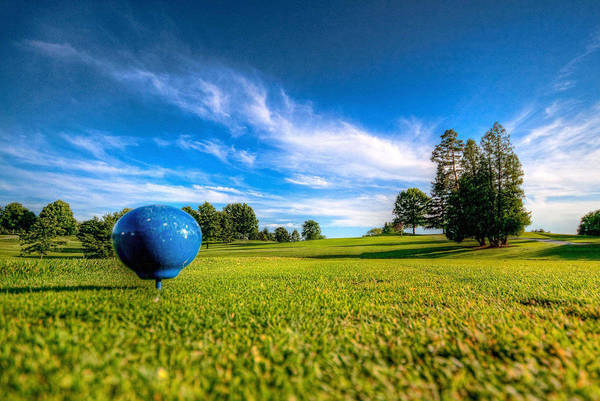 Photograph - Ready To Tee Off by Brent Durken