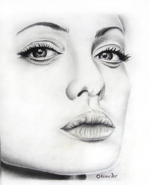 Singh Drawing - Real Angelina by Atinderpal Singh
