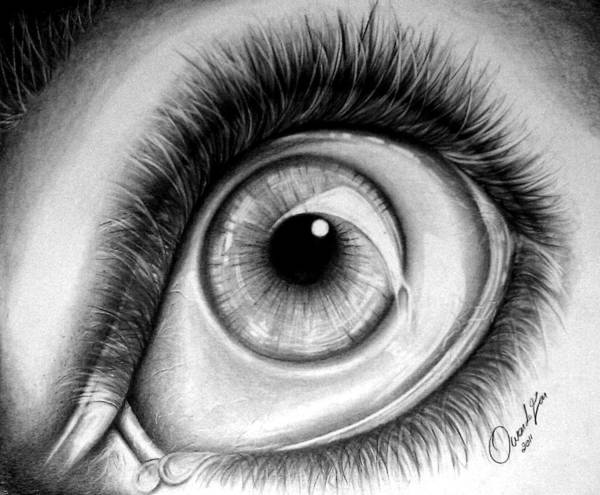 Drawing - Realistic Eye by Owen Lafon