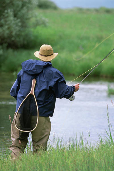 Fly Fishermen Photograph - Rear View Of A Fly-fisherman Casting by Tom Montgomery
