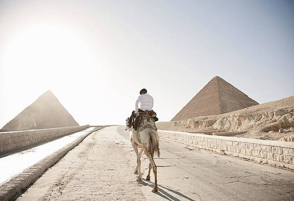 Ancient Photograph - Rear View Of Man On Camel And The Great by Cultura Rm Exclusive/seb Oliver