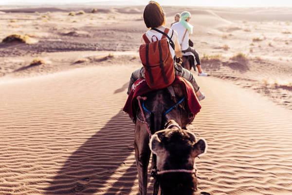 Rear View Of People Riding Camels In Desert Art Print by Oscar Wong
