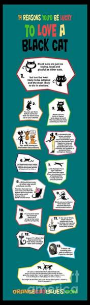 Digital Art - Reasons To Love A Black Cat Infographic by Pet Serrano
