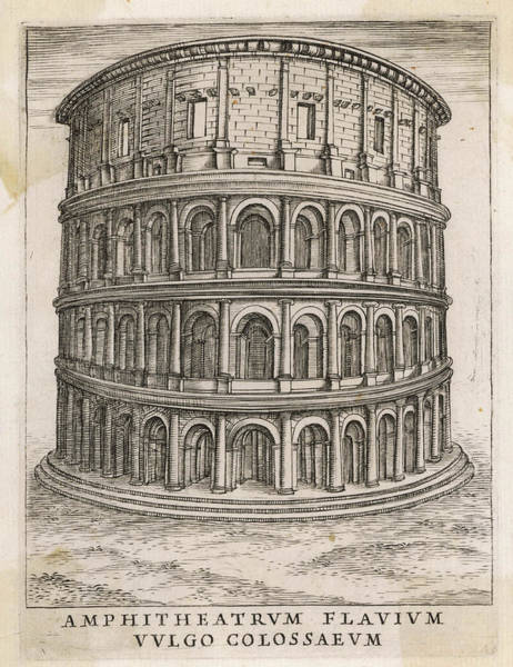 Reconstruction Drawing - Reconstruction Of The Colosseum by Mary Evans Picture Library