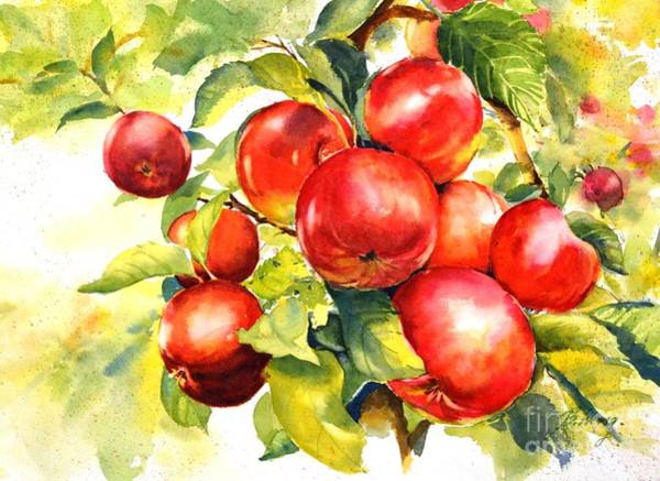 Painting - Red Abundance by Betty M M   Wong