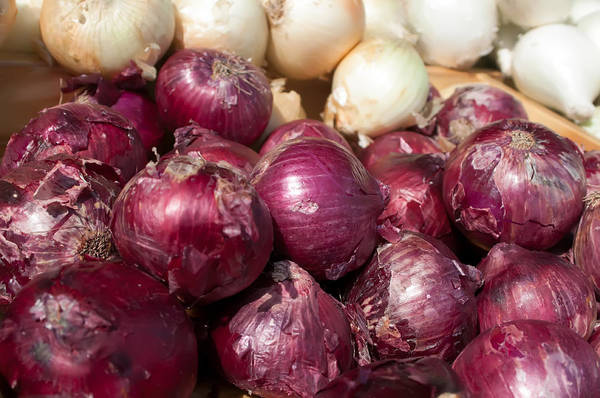 Photograph - Red Ad White Onions On Flea Market Shelf Display by Alex Grichenko