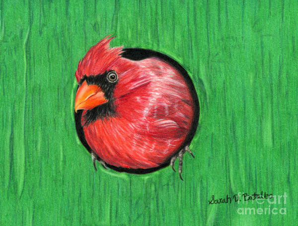 Wall Art - Painting - Red And Green by Sarah Batalka