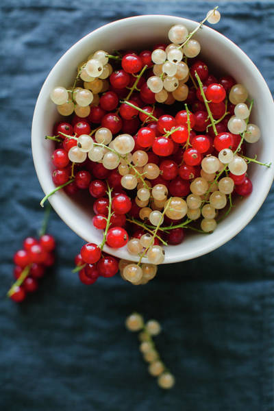Currants Photograph - Red And White Currant by Ingwervanille