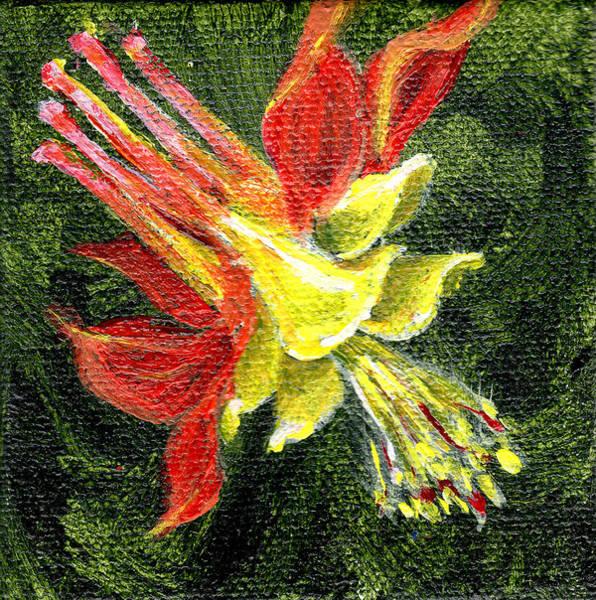 Painting - Red And Yellow Columbine Handpainted 3 By 3 Inch Miniature by Regina Valluzzi