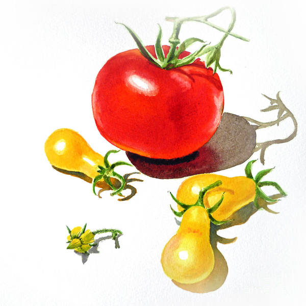 Shadow And Light Painting - Red And Yellow Tomatoes by Irina Sztukowski