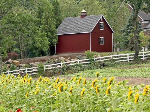 Photograph - Red Barn by Bob Slitzan