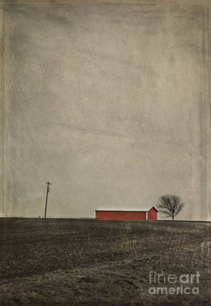 Photograph - Red Barn by Elena Nosyreva