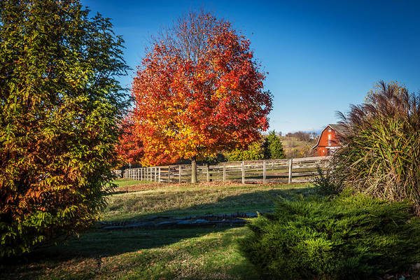 Photograph - Red Barn Fall Foliage Sussex County New Jersey Painted  by Rich Franco