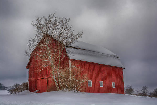 Photograph - Red Barn In Hdr by Guy Whiteley