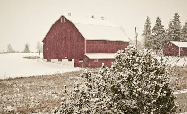 Photograph - Red Barn In The Winter by Nick Mares