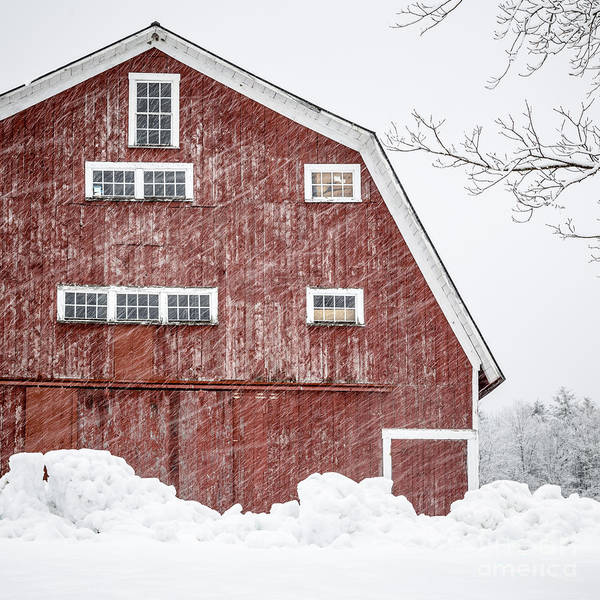 Barn Storm Wall Art - Photograph - Red Barn Whiteout by Edward Fielding