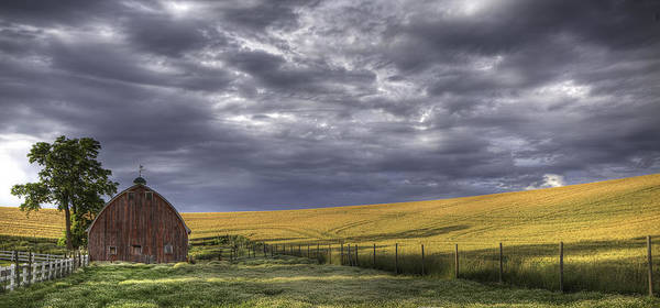 Grey Skies Wall Art - Photograph - Red Barn With Lamas by Latah Trail Foundation