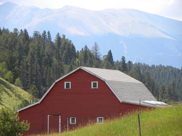 Photograph - Barn - Pikes Peak Burgess Res Divide Co by Margarethe Binkley