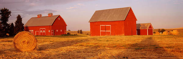 Wall Art - Photograph - Red Barns In A Farm, Palouse, Whitman by Panoramic Images