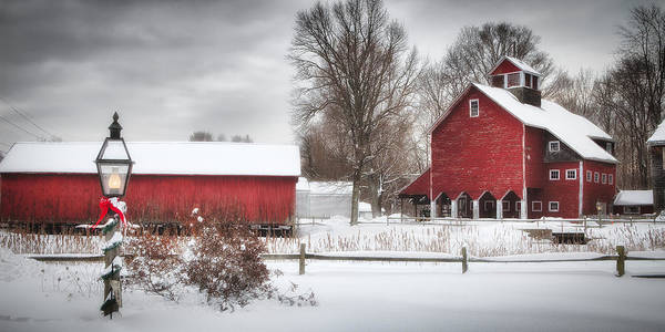Wall Art - Photograph - Red Barns by Michael Petrizzo