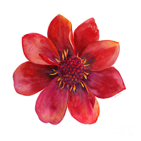Pedal Wall Art - Painting - Red Blossom by Amy Kirkpatrick