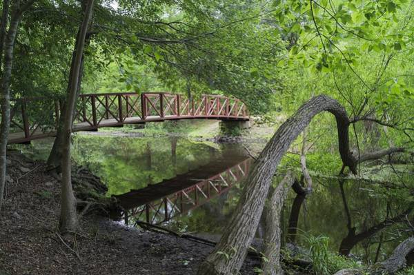 Photograph - Red Bridge Over Peaceful Water by MM Anderson