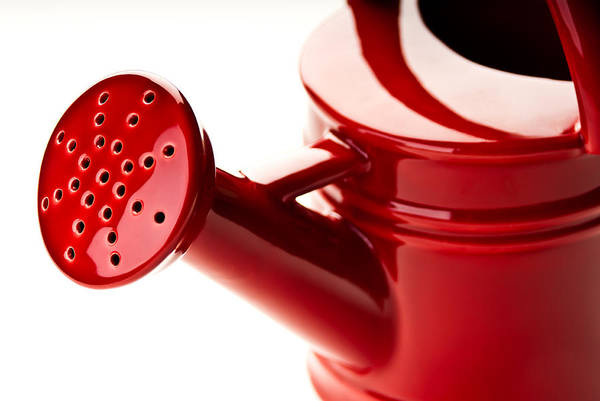 Photograph - Red Ceramic Watering Can by  Onyonet  Photo Studios