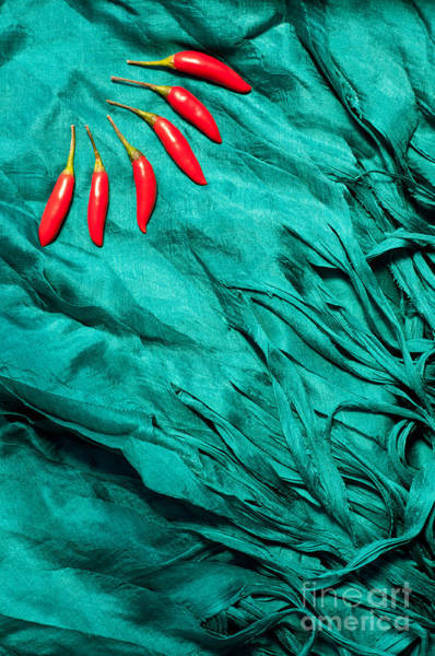 Turqoise Photograph - Red Chillies Blue Silk by Rick Piper Photography
