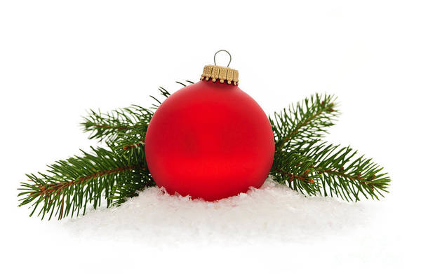 Photograph - Red Christmas Bauble by Elena Elisseeva