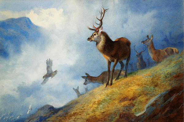 Wall Art - Painting - Red Deer Watching A Golden Eagle Hunt by Archibald Thorburn