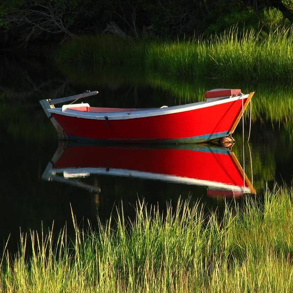 Photograph - Red Dinghy Of Cape Cod by Juergen Roth