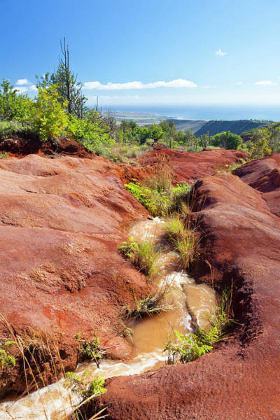 Waimea Canyon Photograph - Red Dirt River, Kauai by Michaelutech
