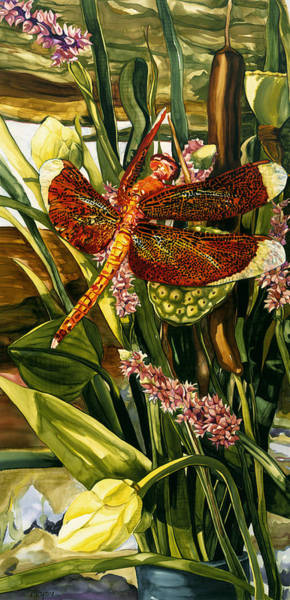 Painting - Red Dragonfly by Artimis Alcyone