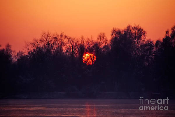 Photograph - Red Fire Ball by Hannes Cmarits