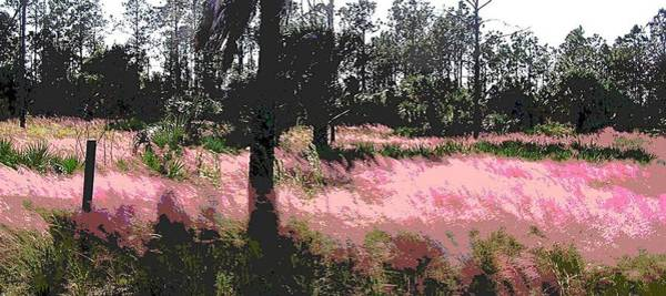 Painting - Red Fire Grass Field Gulf Coast Florida by G Linsenmayer