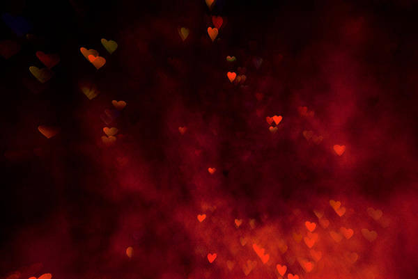 Photograph - Red Flame by Beverly Stapleton